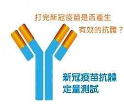 antibody%20test_edited.jpg