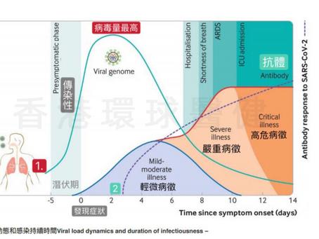 【新冠病毒載量】原來傳染力是分階段!