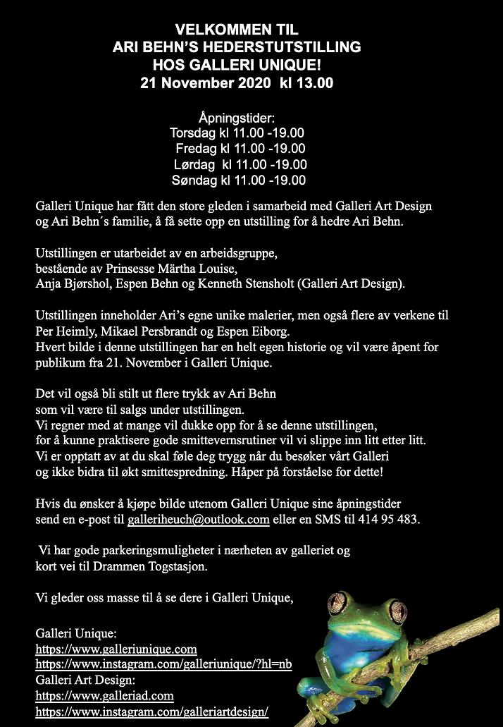 Galleri Unique ARI Behn utstilling.png