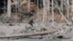 bigfoot-roger-patterson-1_h.jpg