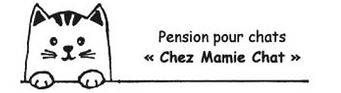 pension chez mamie chat