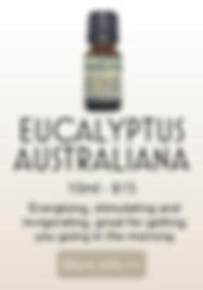 EUCALYPTUS AUSTRALIAN PRODUCT.jpg