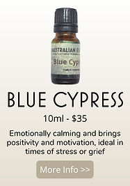 BLUE CYPRESS PRODUCT.jpg