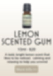 LEMON SCENTED GUM PRODUCT.jpg