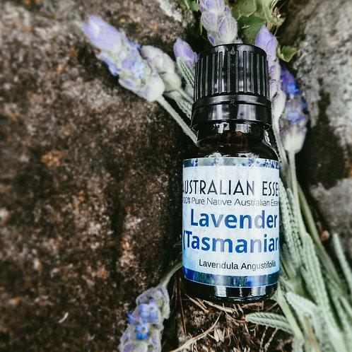 Lavender Oil (Tasmanian)