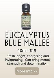 EUCALYPTUS BLUE MALLEE PRODUCT.jpg