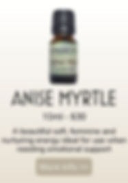 anise myrtle product.jpg