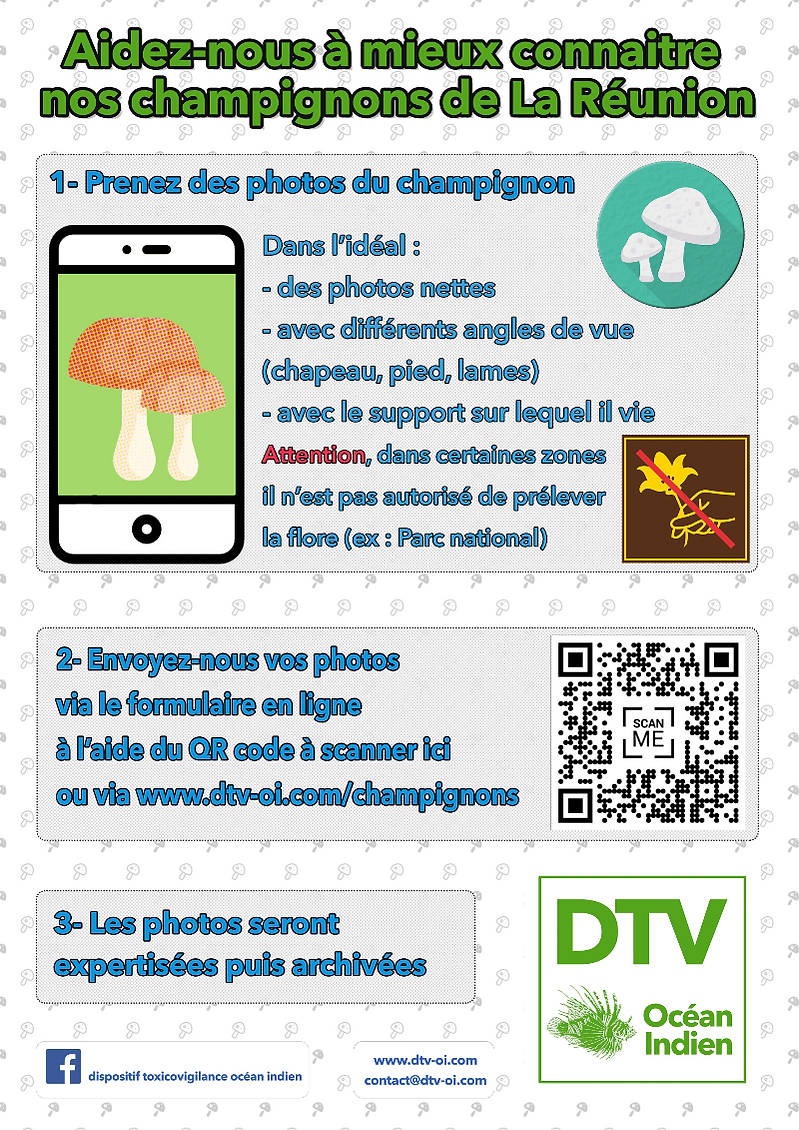 dtv-oi-affiche_champitof_edited.png