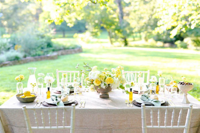 northern virginia wedding