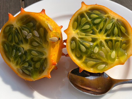 What the heck is Kiwano Horn Melon?