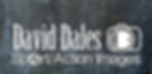 David Dales Logo on a plain background.p