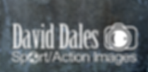 David Dales Logo on a plain background.p