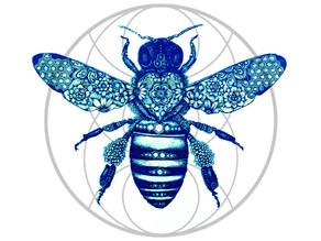 הדבורה הקדושה - חלק ב'