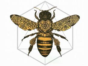 הדבורה הקדושה - חלק א'
