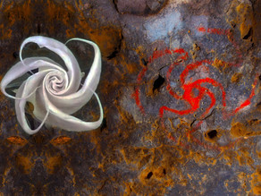 העדות הראשונה לצריכת הלוצינוגנים באתר אמנות סלע