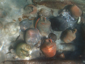 ספינה טרופה עם שפע סחורות התגלתה מול חופי ישראל