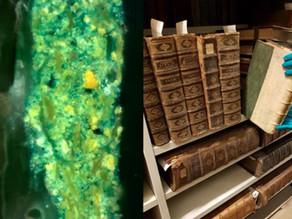 רעל קטלני התגלה על כריכות ספרים מימי הביניים