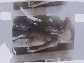 פריים מסרט נתיחה של חייזר משנת 1947 מוצע למכירה תמורת מיליון דולר