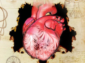 מדענים פתרו את תעלומת הלב האנושי בת 500 השנה של לאונרדו דה וינצ'י