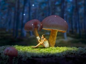 מחקר מגלה כי פטריות קסם מחוללות שינויים מתמשכים בקוגניציה יצירתית