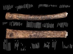 עצם הלבומבו: הממצא המתמטי הקדום ביותר שהתגלה