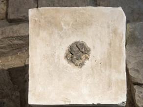 עקבות של קנאביס נמצאו במקדש יהודי קדום בתל ערד