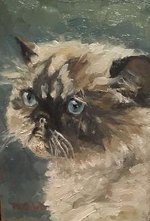 Galo, Patricia Corbett, Oil, 7x5, Sold.j