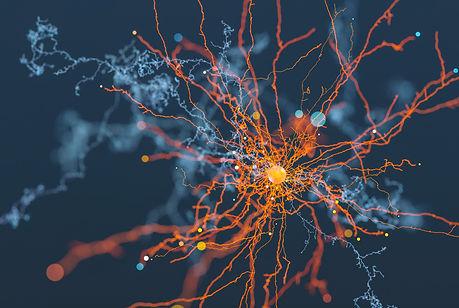 neuron-.jpg