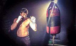 Golden Fist Boxer 4