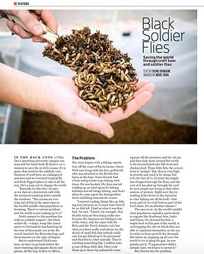 Oi-magazine-black-soldier-flies