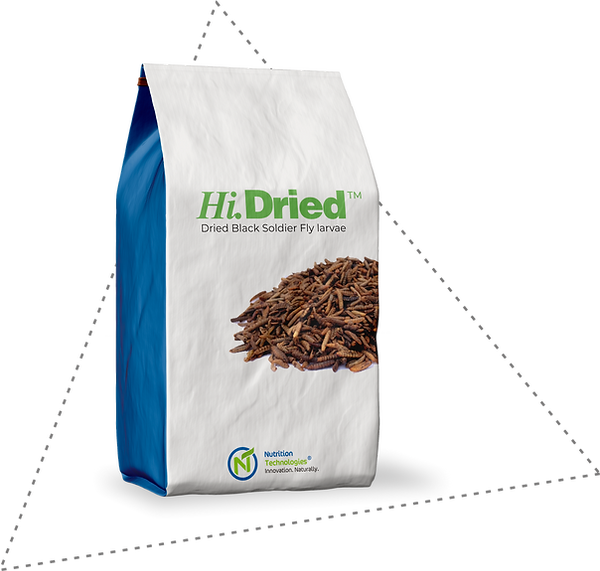 Hi-Dried-Black-Soldier-Fly-BSF-Nutrition-Technologies-larvae