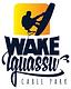 Logo_zap.png