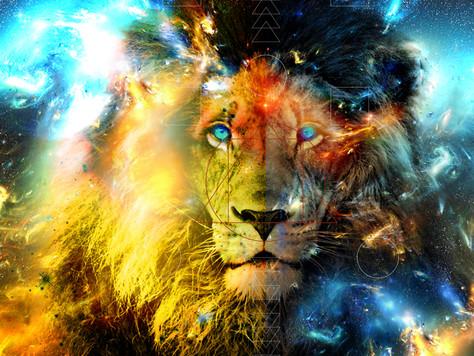 Nouvelle vidéo spéciale Portail du LION : comment reprendre son pouvoir CRÉATEUR et TRANSFORMER sa v