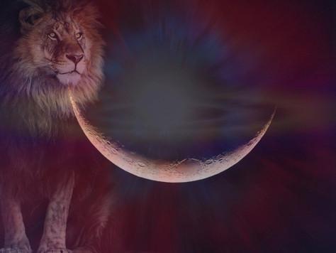 Lune noire en Lion du 31 juillet / 1er août 2019 : PURIFICATION, ACTIVATION & TRANSFORMATION
