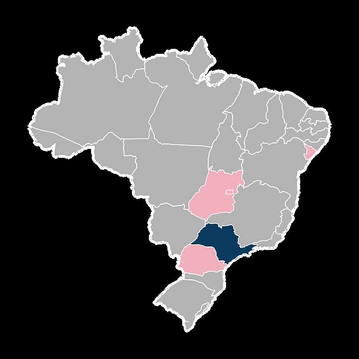 BRASILMAPA1.png