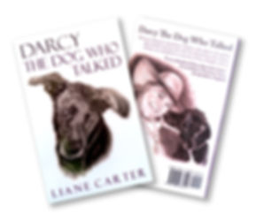 Darcy: The Dog That Talked book cover.