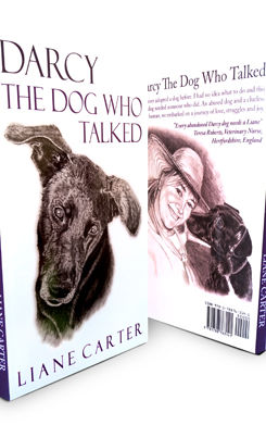 Darcy: The Dog Who Talked book cover by author Liane Carter