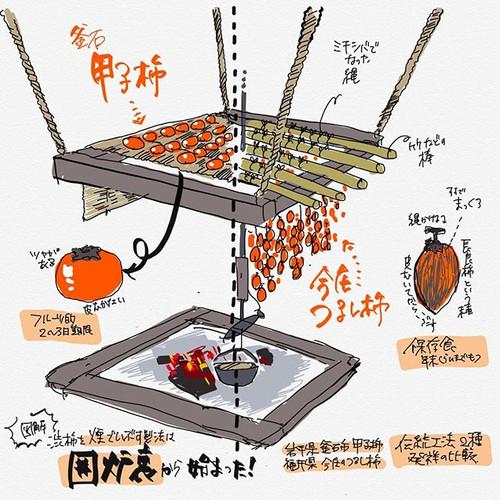 釜石甲子柿づくり図解