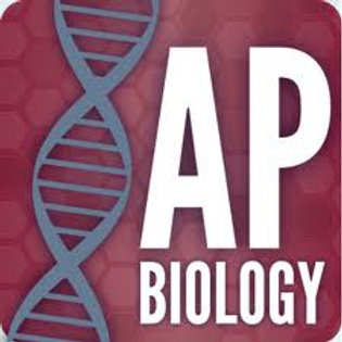 AP Biology Review Course