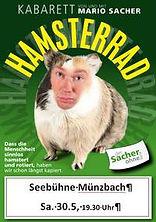 Hamsterrad_MarioSacher_2015.jpeg
