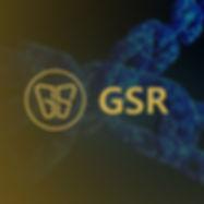 gsr1_1.jpg