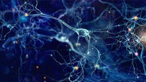 인간 정신 활동의 비밀, AI가 봉인 풀 수 있을까