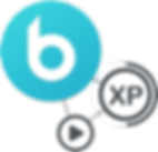 bnv iconn.png