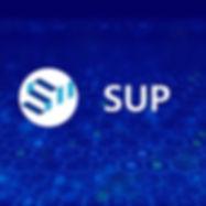 sup1_1.jpg