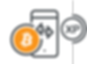 btc xp icon.png