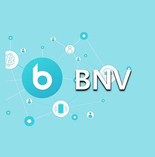 bnv1_1.jpg