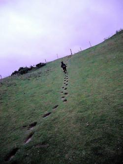 Giant Footprints (Kildare)