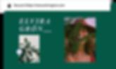 Custom domain for portfolio website called Elvira Gron