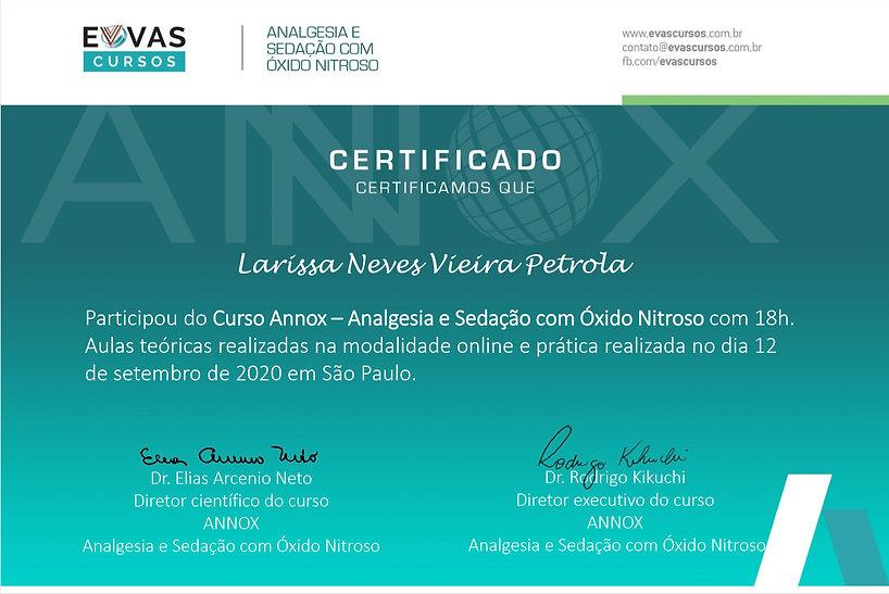 Certificado  ANNOX.jpg