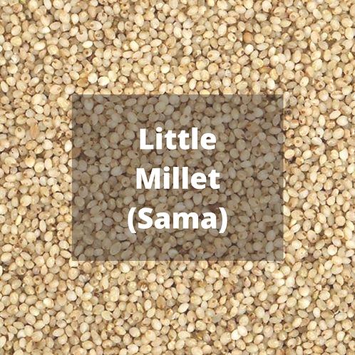 Little Millet / Sama